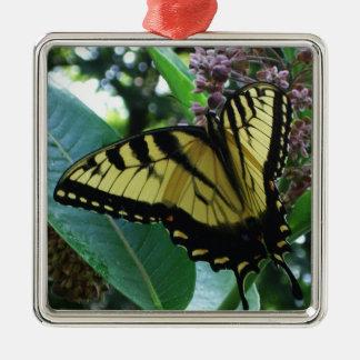 Ornement Carré Argenté Papillon de machaon I sur le Milkweed chez