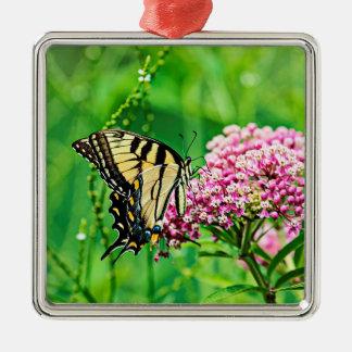 Ornement Carré Argenté Papillon oriental de machaon de tigre