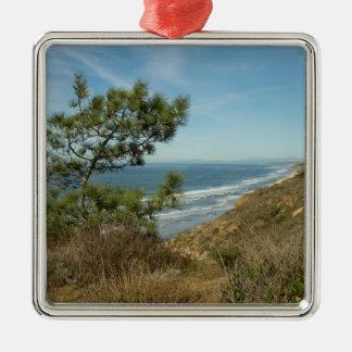 Ornement Carré Argenté Paysage de pin de Torrey et de littoral de la