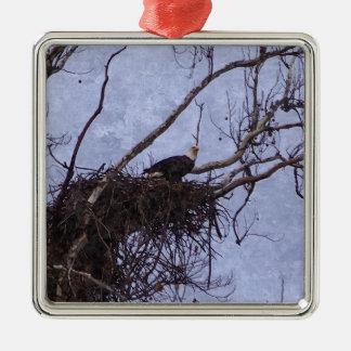 Ornement Carré Argenté Peinture de surveillance d'Eagle