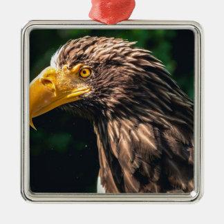 Ornement Carré Argenté Plan rapproché d'Eagle