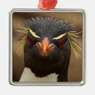 Ornement Carré Argenté Portrait de pingouin de Rockhopper
