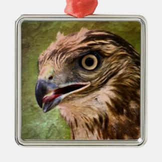 Ornement Carré Argenté Portrait d'un faucon