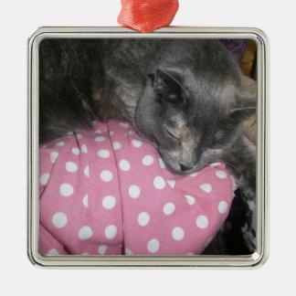 Ornement Carré Argenté Produits de chat