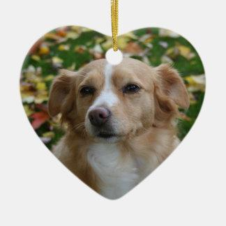 Ornement Cœur En Céramique Art personnalisé de mot de photo de chien