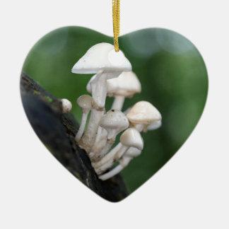 Ornement Cœur En Céramique Champignon de porcelaine, mucida d'Oudemansiella