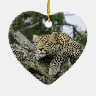 Ornement Cœur En Céramique Chat sauvage animal de safari de l'Afrique d'arbre