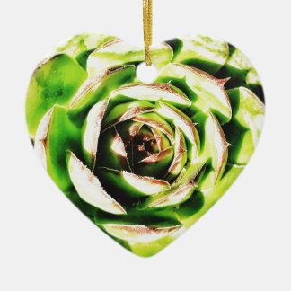 Ornement Cœur En Céramique Coeur Dble-dégrossi succulent Ornanent