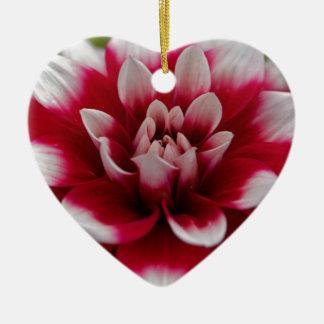 Ornement Cœur En Céramique Dahlia rouge et blanc (hortensis de dahlia X)