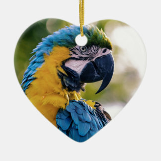 Ornement Cœur En Céramique Le perroquet