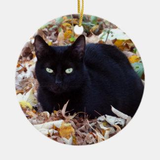 Ornement de cercle de photo d'automne de chat noir