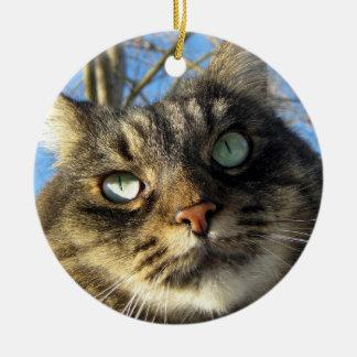Ornement de chat de Kitty