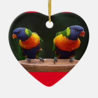 Ornement de coeur de perroquet d'arc-en-ciel