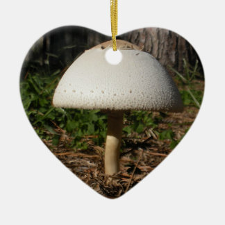 Ornement de coeur de Shroom 0659