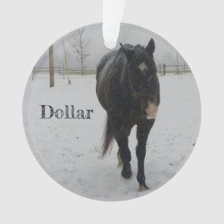 Ornement de Noël du dollar