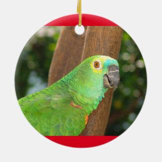 Ornement de vacances de perroquet d'Amazone