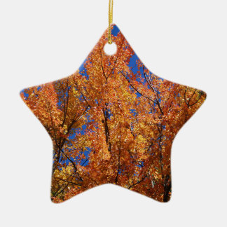 Ornement Étoile En Céramique Arbre orange du feu