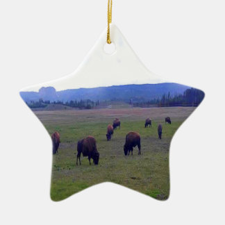 Ornement Étoile En Céramique Buffalo sauvages