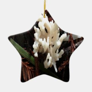 Ornement Étoile En Céramique Champignon de corail en ivoire