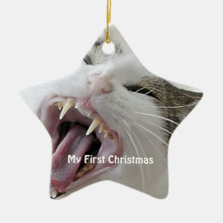 Ornement Étoile En Céramique Chat fou argenté ma première photo de Noël