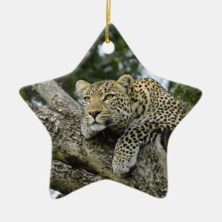 Ornement Étoile En Céramique Chat sauvage animal de safari de l'Afrique d'arbre