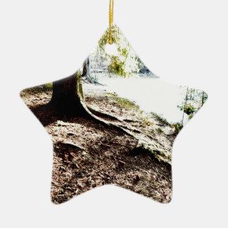 Ornement Étoile En Céramique Étang de forêt