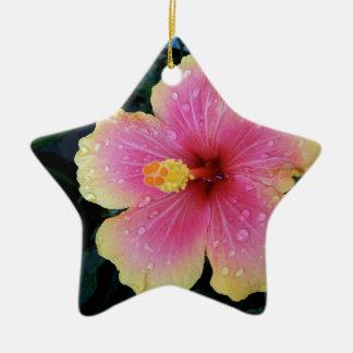 Ornement Étoile En Céramique Fleur de Hawaïen de ketmie