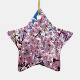 Ornement Étoile En Céramique Fleur japonaise de cerise