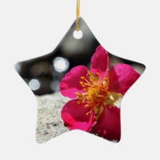 Ornement Étoile En Céramique Fleur rose de mystère
