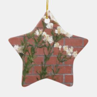 Ornement Étoile En Céramique Fleurs sur la brique