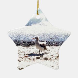 Ornement Étoile En Céramique mouette par l'océan sur l'image de plage