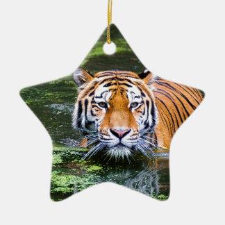 Ornement Étoile En Céramique Natation de tigre