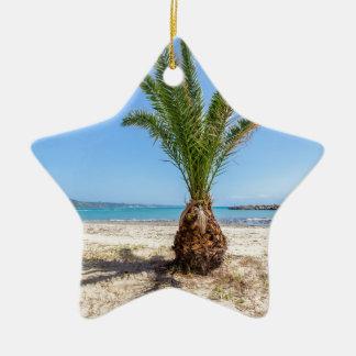 Ornement Étoile En Céramique Palmier tropical sur la plage sablonneuse