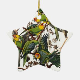 Ornement Étoile En Céramique Perroquet de la Caroline - John James Audubon