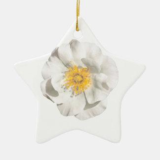 Ornement Étoile En Céramique Photo de fleur blanche