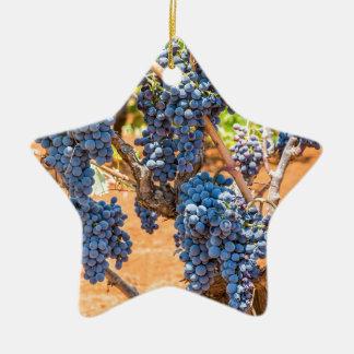 Ornement Étoile En Céramique Plante de raisin avec les groupes grapes.JPG bleu