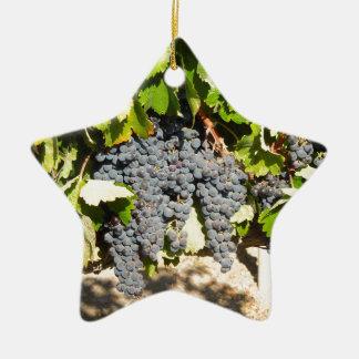 Ornement Étoile En Céramique Raisins de Napa