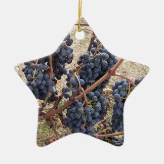 Ornement Étoile En Céramique Raisins rouges sur la vigne. La Toscane, Italie