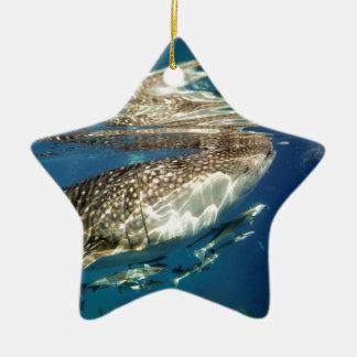 Ornement Étoile En Céramique Requin de baleine et poissons de remora