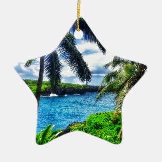 Ornement Étoile En Céramique Scène du Hawaïen IMG_1122 4