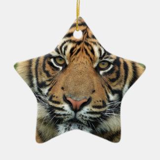 Ornement Étoile En Céramique Tigre adulte
