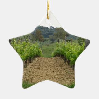 Ornement Étoile En Céramique Vignoble au printemps. La Toscane, Italie
