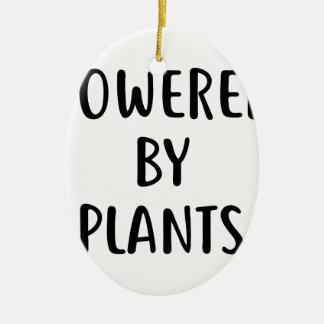 Ornement Ovale En Céramique Actionné par des plantes