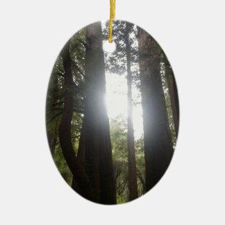 Ornement Ovale En Céramique Beauté de forêt