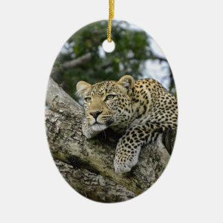 Ornement Ovale En Céramique Chat sauvage animal de safari de l'Afrique d'arbre