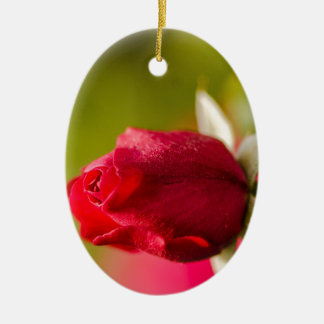 Ornement Ovale En Céramique Conception haute de fin de rose rouge