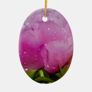 Ornement Ovale En Céramique Étincelle florale rose