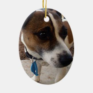Ornement Ovale En Céramique Fox_Terrier, _