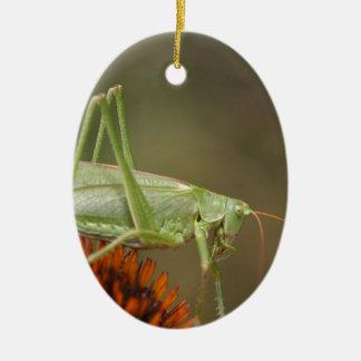 Ornement Ovale En Céramique Grand Bush-Cricket vert (viridissima de
