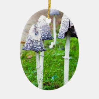 Ornement Ovale En Céramique Groupez les champignons d'encre près du chemin